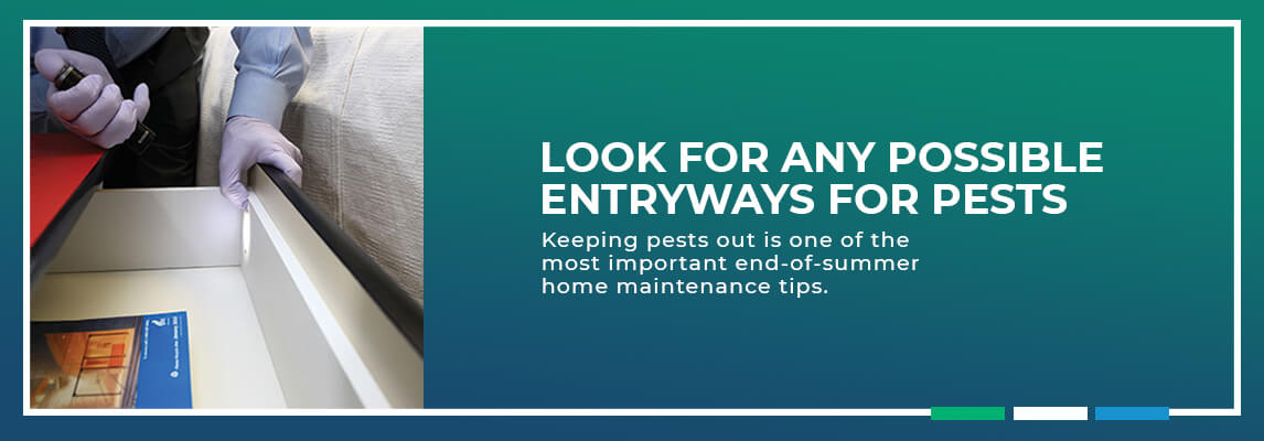 Look for Any Possible Entryways for Pests. Keeping pests out is one of the most critical end-of-summer home maintenance tips.