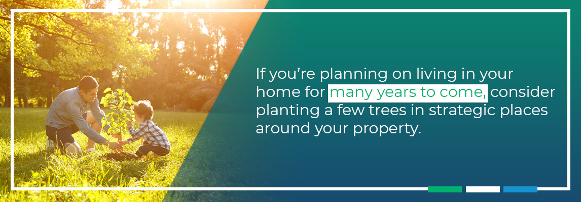 If you're planning on living in your home for many years to come, considerplanting a few treesin strategic places around your property.